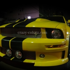 mustang_eleanor_racing_stripes