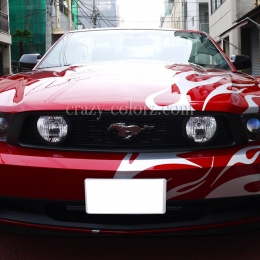 mustang_crazy_flame4