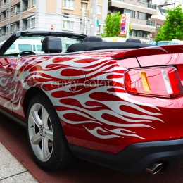 mustang_crazy_flame5