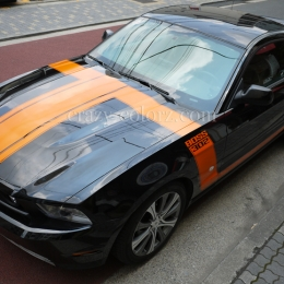 mustang_boss302_style_t_stripes