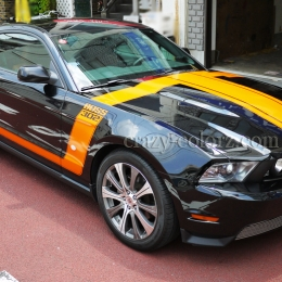 mustang_boss302_style_t_stripes2