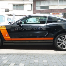mustang_boss302_style_t_stripes5