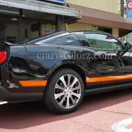 mustang_boss302_style_t_stripes6