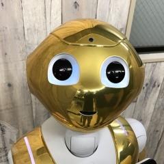 ペッパー 着せ替え ラッピング カスタム 東京 台東区