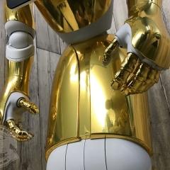 金メッキ ペッパー ラッピング ゴールド 東京