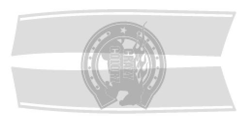 ミニ ミニクーパー ステッカー デカール ストライプ 東京